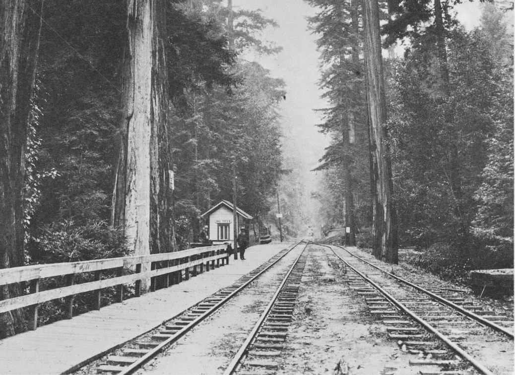 A Few Years Before The Rail Road In 1867, A San Francisco Entrepreneur  Named Joseph Welch, Purchased Several Acres Of Land And Opened The Famous  Big Trees ...